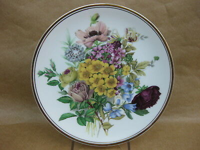 Edwardian Fine Bone China Floral Display Plate ~ Collector / Cabinet Plate