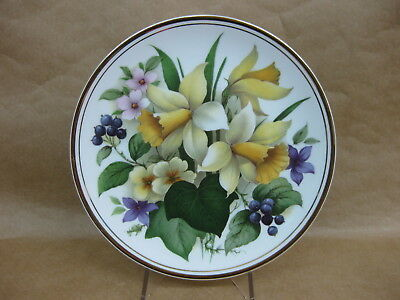 Edwardian Fine Bone China Floral Display Plate ~ Daffodils ~ Collector / Cabinet
