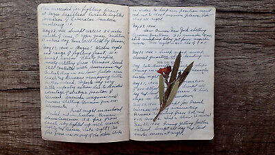 Circa1944 Handwritten Diary Us Navy Mine Sweeper Battle Of Anzio Invasion France