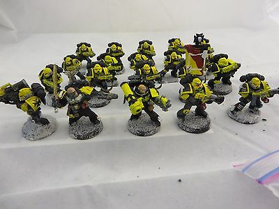 Warhammer 40K Space Marine Squad large lot painted (20)