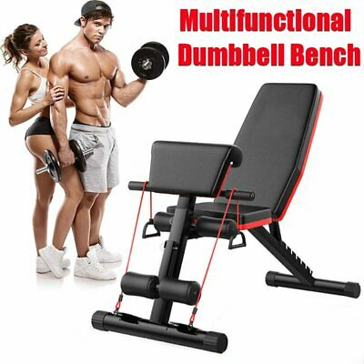 Heavy Duty 4 in 1 Dumbbell Bench Folding Gym Abs Chest Press Lifting Flat Home
