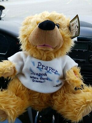 Noah  Prayer Bear Talking NWT