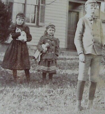 Outdoor Cabinet Photo Of 3 Siblings & Pony Girls Holding Kitty Cat & China Doll
