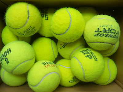 14 Used Tennis Balls, Wilson, Dunlop, Head etc - Great Dog Toys