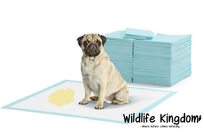 Heritage Puppy Training Pads Wee Wee Pad Train Dog Indoor Floor Toilet Mat XL