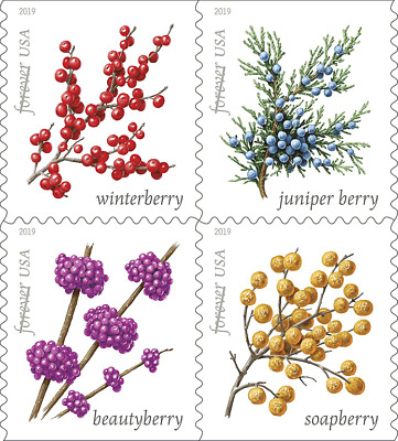 #5415 -5418a 2019 Winter Berries Booklet block/4 - MNH (Ships after sept 18)