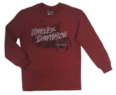 Harley-Davidson Little Boy's Crazy Fun Long Sleeve Crew-Neck Jersey Tee (2T/3T)