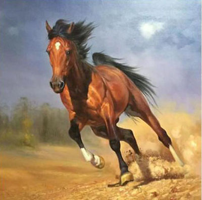 CHOP359 fancy 100/% hand-painted modern animals horse art oil painting on canvas