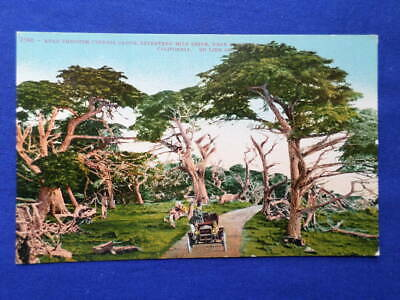 Antique Postcard Maxwell Automobile 17 Mile Drive Cypress Grove Monterey Ca.