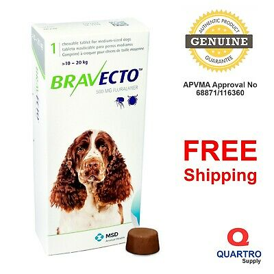 BRAVECTO Chew for Medium Dogs 10-20 kg Green Pack - EXP 04-2021 Genuine by MSD