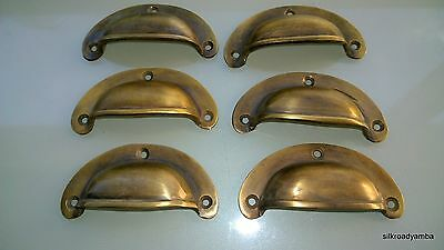 6 small heavy shell shape pull handle vintage solid brass vintage style 82mm B