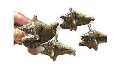 4 small SHELL FISH solid BRASS knobs TROPICAL VINTAGE old style 75 mm B
