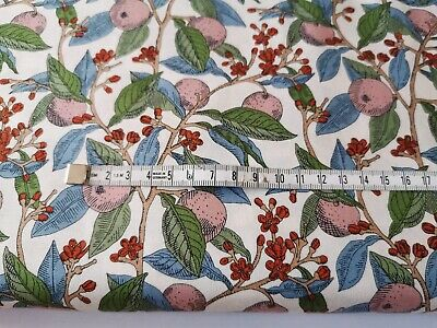 Soimoi Fabric Apple /& Berries Fruits Fabric Prints By Meter-FT-553G