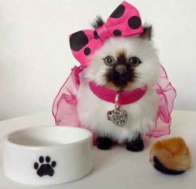 """Siamese Kitten for American Girl Doll 18"""" Accessories Fit Pet SET Knockoff"""