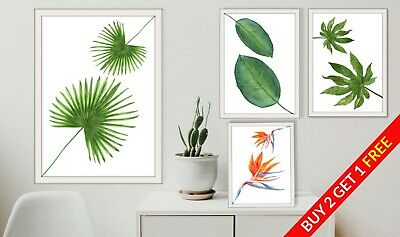 Watercolour Tropical Leaf Plant Home Prints. Wall Art Bathroom Hall Room Picture