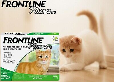 FRONTLINE Plus for Cats and Kittens (1.5 pounds and over) Flea and Tick Teatment