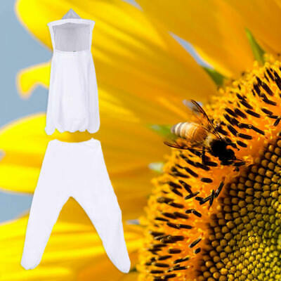 White Top + Pants Chemical Fiber Beekeeping Jacket