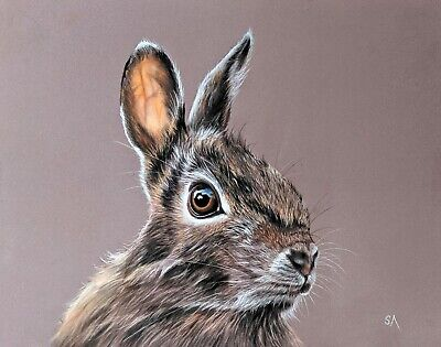 Original Pastel Painting RABBIT HARE Wildlife Drawing Portrait ART by S Afford