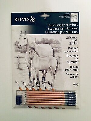 Reeves Sketching by Numbers. Horse and Pony. Includes Sketch Pencils and Board.