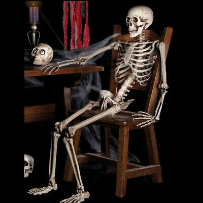 Halloween Poseable Life Size Skeleton Party Prop Decor Human Anatomy Mode US HOT