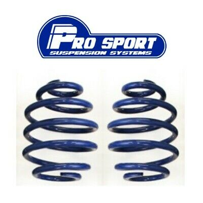 2x E46 Coilover Blue Rear Springs 316 318 320 323 325 328 330 not M3 not 4x4
