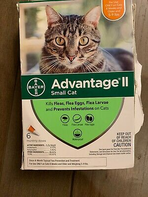 NWB Bayer Advantage II Flea Prevention for Small Cats, 5-9 lbs, 6 Months, 6 Dose