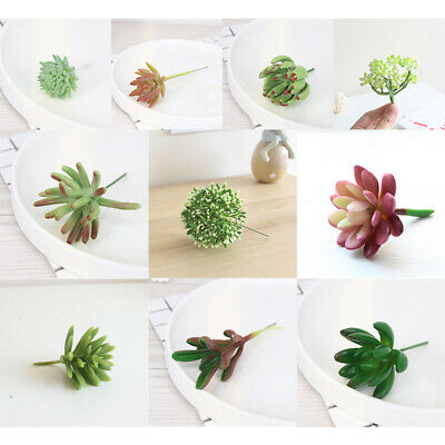 Plante Succulente En Plastique Artificiel Herb Pot De Fleur Décoration