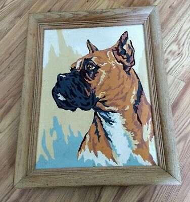 vintage 1950's framed paint by number Boxer dog