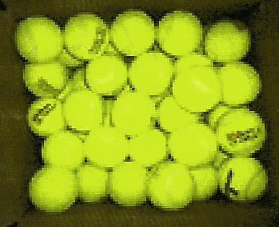 InTennis Balls - fifty used - many uses