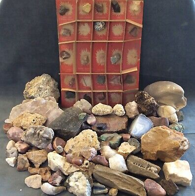 Box of Assorted Rock Specimens Geodes Fossils Gemstones Goodies