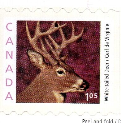 2000 WILDLIFE DEFINS. FROM BKT#239, UC#1881ii, $1.05, INT'L  RATE, MNH