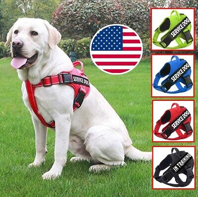 Service Dog Harness Pet Adjustable Vest Collar Walk Out for Small Large & Patch