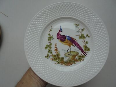 Spode England Fine Bone China Bird of Paradise Plate 9""