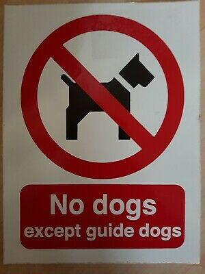 """Viking Signs PV917-A4P-V/""""Dim Cwn Heb Law Arwain//No Dogs Except Guide Dogs/""""..."""