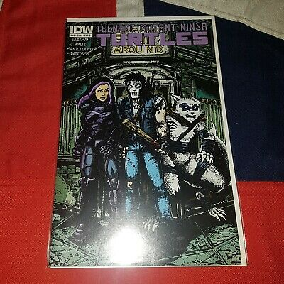 Teenage Mutant Ninja Turtles #46 Kevin Eastman Casey Jones Variant Cover B IDW