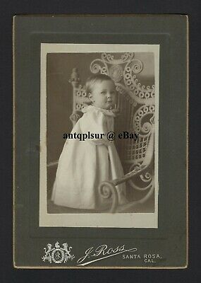 Cabinet Photo of Adorable Victorian Toddler by J. Ross, Santa Rosa California