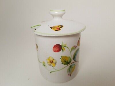 "Rare Vintage James Kent Old Foley Apothecary Jar ""Strawberry"" Pattern Butterfly"