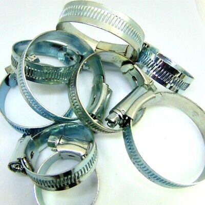 Hose Clip mixed sizes (100 off)
