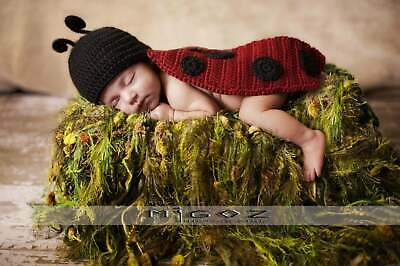 The Lady Bug outfit for newborn baby - Photo Prop