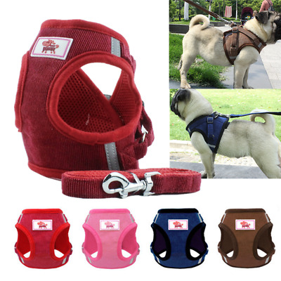 Mesh Padded Dog Harness w/Leash Pet Puppy Vest for Small Medium Dogs Soft Vest