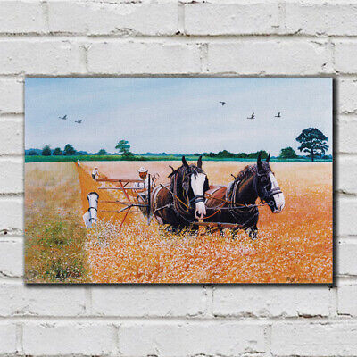 Cutting the Corn - 32 - Roy Didwell Canvas Print