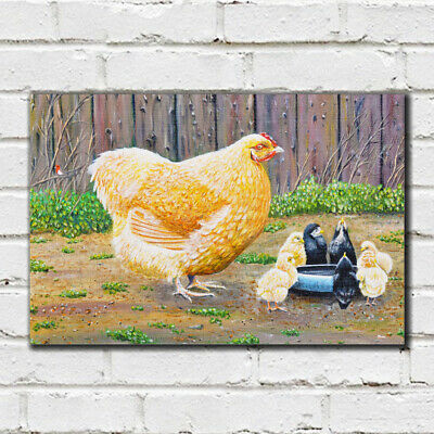 Mother Hen - 49 - Roy Didwell Canvas Print