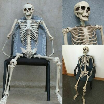 Plastic Jointed Human Skeleton Decoration Halloween Party Prop Decoration 38CM