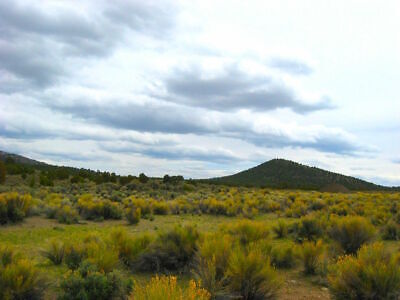 Rare 2.27 Acre Lot Elko Nevada Great Views & Setting!  Cash Sale!  No Reserve!