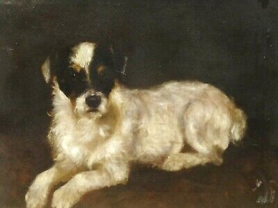 19th Century English Black & White Wire Hared Terrier Dog Portrait Antique