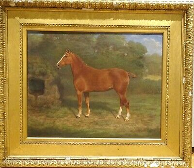 Large 19th Century English Chestnut Hunter Horse Portrait David Gourlay STEELL