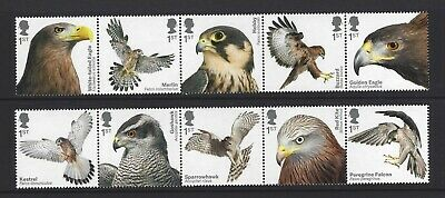 2019 Gb Qe2 Royal Mail Commemorative Complete Stamp Set Birds Of Prey Mnh