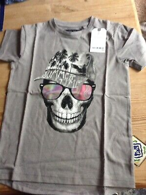 Bnwt Next Boys Skull Summertime Grey T-Shirt Size 4 Years Rrp £7