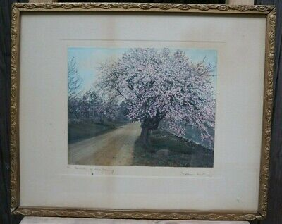"""The Bounty of the Spring"" by Wallace Nutting - Hand-Colored Photo - Signed"