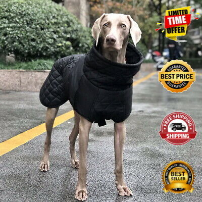 Winter Coat Waterproof Clothes for Large Small Medium Dog Pet Padded Jacket Vest
